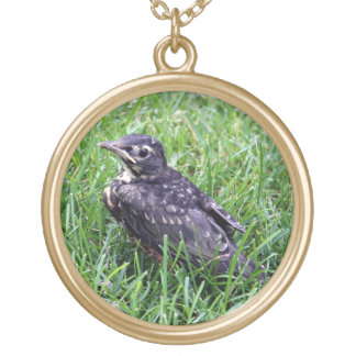 Baby Robin Just Out of Nest Gold Plated Necklace