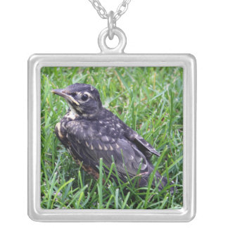 Baby Robin Just Out of Nest Square Pendant Necklace