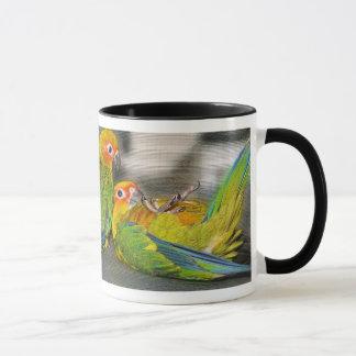 Baby Sun Conure Mug