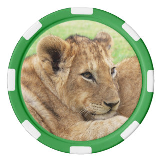 Baby Tiger custom monogram poker chips