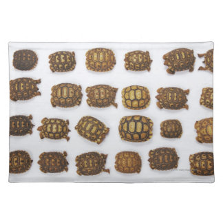 Baby tortoises arranged in rows placemat