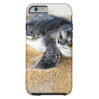 baby-turtle. iPhone 6 case