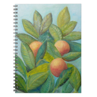 BACKYARD FLORIDA ORANGES Photo Notebook