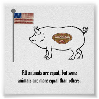 bacon salt nation pig poster