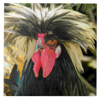 Bad Hair Chicken Photo Tile