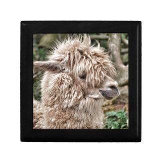 Bad Hair Day Lama Small Square Gift Box