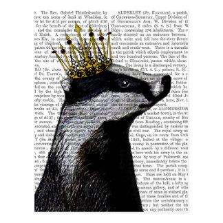 Badger King Postcard