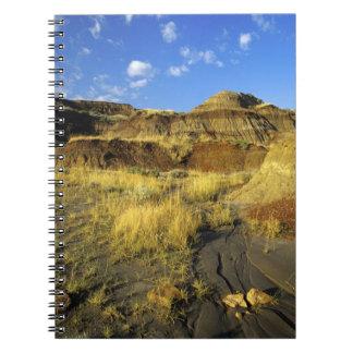 Badlands at Dinosaur Provincial Park in Alberta, Notebook