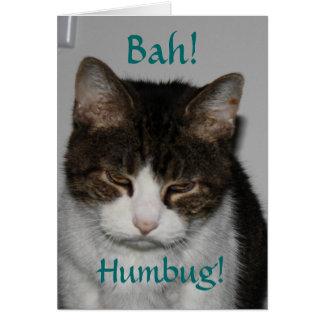 Bah! Humbug! - Cat's Holiday Greeting Card