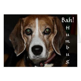 Bah! Humbug! - Dog's Holiday Greeting Card