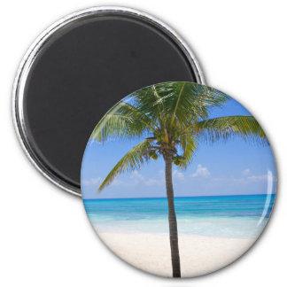 Bahamas Palm Tree 6 Cm Round Magnet