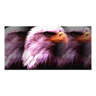 Bald American Eagle Photo Card