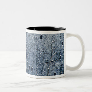 Bald Eagles (Haliaeetus leucocephalus) at the Two-Tone Coffee Mug