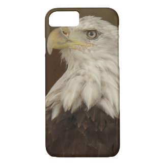 Bald Hawk iPhone 8/7 Case
