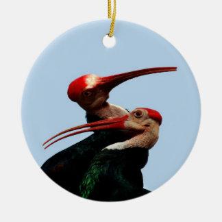 Bald Ibis Bird South Africa Christmas Ornament