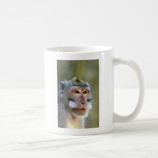 Balinese macaque monkey coffee mug