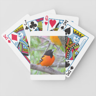 Baltimore Oriole Bicycle Playing Cards