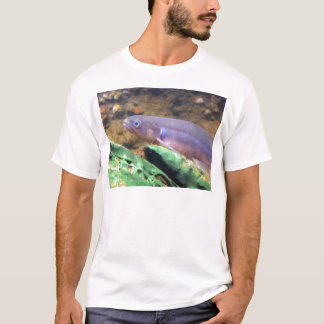 Banded Kokopu T-Shirt