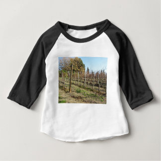 Bare vineyard field in winter . Tuscany, Italy Baby T-Shirt