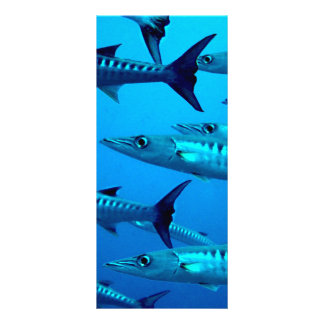 barracuda dive deep sea ocean water tropical wave rack card design