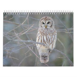 Barred Owl Strix Varia Wall Calendars