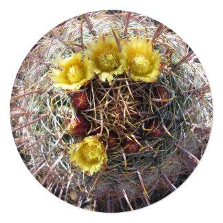 Barrel Cactus Plant Fishhook Yellow 13 Cm X 13 Cm Square Invitation Card