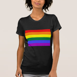Basic Rainbow Flag T-Shirt