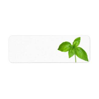 Basil Leaves Isolated On White Background Return Address Label