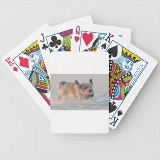 Basset Griffon Vendéen, Grand Puppy Dog Bicycle Playing Cards