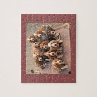 Basset hound puppies puzzle