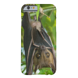Bat Barely There iPhone 6 Case