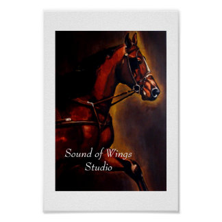 Bay Morgan Horse in Harness Poster