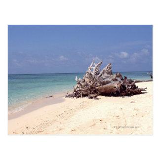 Beach 6 postcard