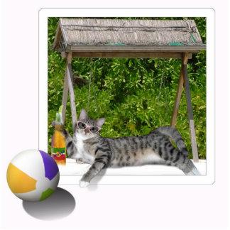 Beach Ball  Kitty Standing Photo Sculpture
