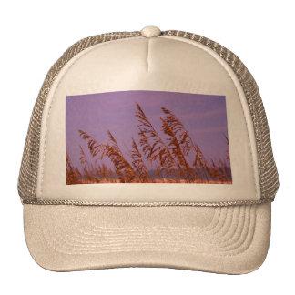 Beach Sea Oats Mesh Hat