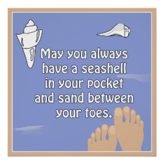 Beach Seashell Sand Between Toes Poster