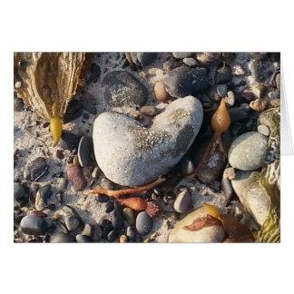 beach treasures - rocks and seaweed card