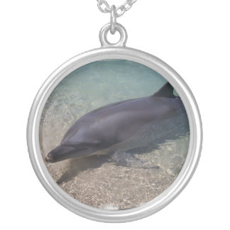 Beached Dolphin Necklace