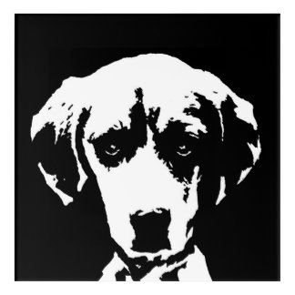 Beagle Black & White Acrylic Wall Art