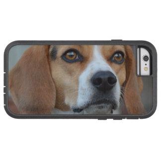Beagle Close Up Tough Xtreme iPhone 6 Case