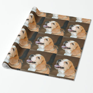 Beagle dog gift wrapping paper