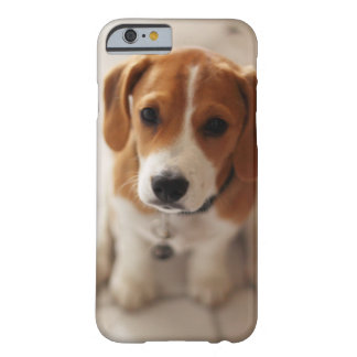 Beagle Puppy 2 Barely There iPhone 6 Case