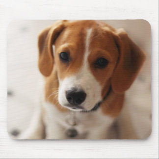 Beagle Puppy 2 Mouse Pad