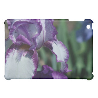 Bearded Iris Flower iPad Case