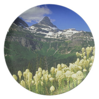 Beargrass at Logan Pass in Glacier National Park Plate