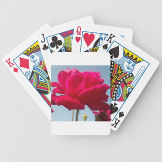 Beautiful Amazing Hakuna Matata Rose For the Bride Bicycle Playing Cards