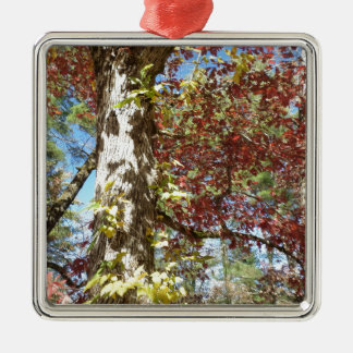 Beautiful Autumn Leaves Christmas Ornament