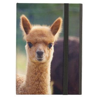 Beautiful Baby Alpaca iPad Air Case
