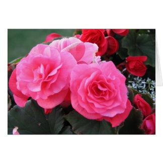 Beautiful Begonia - Card