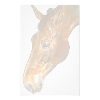 Equine Studies writing template paper